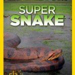 مستند جستجوی مارهای غول پیکر – Search For The Super Snake